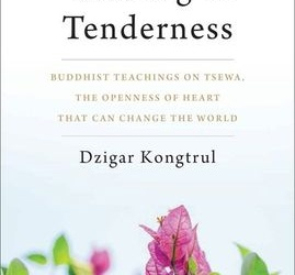 Journal Entry 024: The Radical Openness Of Heart That Can Change The World